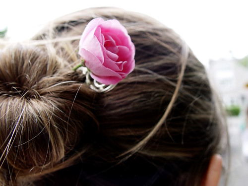 Rose in Dina's Hair