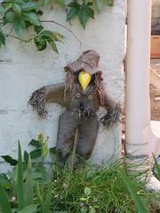 The Scarecrow (Hurina) Tags: scarecrow salo