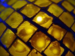 ¿Que es? (.Melian.) Tags: luz luces amarillo v cristal velas locura mbd melian 50club sonycybershotdscf707 ltytr1 montsebuendía