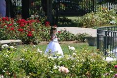 Little Angel (Happy Tinfoil Cat) Tags: cute girl angel little bridesmaid dreamy angelic rosegarden radiant sanjosemunicipalrosegardens