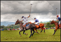 Polo in Virginia - by SkipSteuart