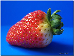Red Hot Strawberry... (welshlady) Tags: red macro fruit wow strawberry memorial bravo 100views 300views 200views bandstand standingovation helluva captainscott welshlady 10faves amateurhour theworldthroughmyeyes abigfave welshflickrcymru superbmasterpiece wowiekazowie