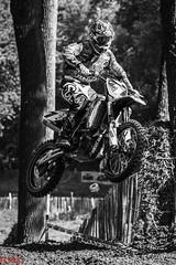 IMG_4311.jpg (bodsi) Tags: cross belgium champion rider motocross mx kester bodsi