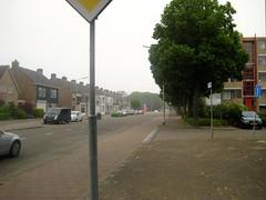 (aaipodpics) Tags: netherlands bergenopzoom beukenlaan guidogezellelaan