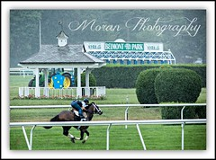 Belmont Park (EASY GOER) Tags: horses horse ny newyork sports race canon track running racing 5d athletes races thoroughbred equine belmontpark markiii