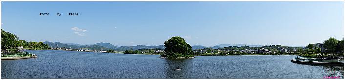 和歌山大池遊園-平池綠地公園 (24).JPG