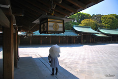 L'ombrello bianco (Fabio Bianchi 83) Tags: travel japan architecture temple tokyo asia harajuku shinto viaggio giappone architettura meijijingu yoyogipark tempio yoyogikoen viaggiare scintoismo parcoyoyogi