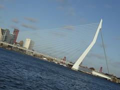 Rotterdam (thomaslion1208) Tags: rotterdam holland zuidholland brucke pont bridge nederland niederlande