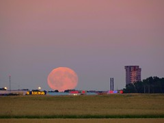Fullmoon Rise at Shopping Centre, Linköping Sweden 20 Jul 2016 (DSC11238afl) (Johan Kleventoft) Tags: linköping sweden östergötland johankleventoft fullmoon moon moonrise shoppingcentre skyscraper thetower tornet countryside trees ikea