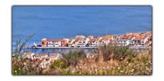A fleur d'eau (Charlottess) Tags: mars nikon5300 languedocroussillon sète hérault mer méditerranée