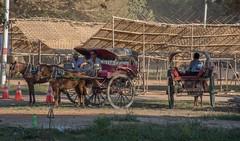 Horse & Cart (Ignacio Blanco) Tags: asia myanmar bagan temple ancient kingdom faith sunrise sunset horse cart transport travel informal tourism