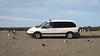 bellywarmer (Claudia Künkel) Tags: oregon seagulls crows vehicle minivan seaside coast