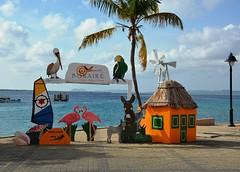 Bonaire, Once a Visitor Always a Friend (Stuart Axe) Tags: bonaire sign maritime caribbean caribbeansea island curaçao display flamingo pinkflamingo donkey parrot palm palmtree house pelican vacation holiday lesserantilles westindies antilles windwardislands leewardislands