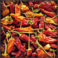 Dried Chillies (Jason 87030) Tags: chillies dried peppers red orange yellow grown square nokia lumia 930 frame border hot