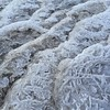 (hannemiriam) Tags: texture february2017 denmark danmark naturepattern icepattern iceflowers icy cold ice abstract frost natur vinter winter nature iphone