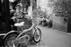 Today's Touring is Over (Purple Field) Tags: contax tvs canoscan8800f stphotographia carl zeiss variosonnar 2856mm fuji neopan iso400 presto bw monochrome film 35mm analog jakarta indonesia street alley walking bicycle 今タックス カール・ツァイス バリオ・ゾナー 富士 ネオパン プレスト 白黒 モノクロ アナログ 銀塩 フィルム ジャカルタ インドネシア ストリート 路地 自転車 散歩