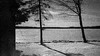 Extreme Grain (patrickkuhl) Tags: frozen lake snow ice water trees winter north upnorth eagleriver wisconsin wisc wisco blackwhite blackandwhite monochrome film filmcamera filmisnotdead filmphotography nature landscape olympus olympusxa xa 35mm analog kodak panatomicx kodakd76 d76 expired expiredfilm selfdeveloped rangefinder grain grainy extremegrain