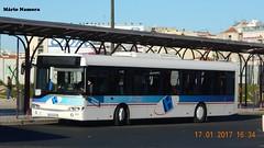 Santo António 523 Solaris Urbino 12 40 - SA - 19 Campo Grande (madafena1) Tags: santo antónio 523 solaris urbino 12 autocarro campo grande barraqueiro