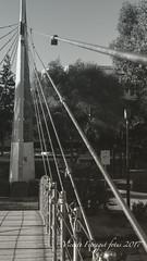 P1128929 (V. Ferragut) Tags: rio santa eularia puente paseo vegetacion candados blanco negro olympus ferragut ibiza eivissa