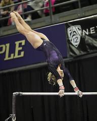UW-FT4I5700 (spf50) Tags: gymnastics ncaa