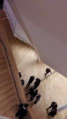 Neue Perspekiven erdecken (wagner.giessen) Tags: hamburg elbphilharmonie germany deutschland hafencity eröffnung architektur architecture landmark wahrzeichen perspektive perspective durchblick view wow superlativ strukur grandios gros big