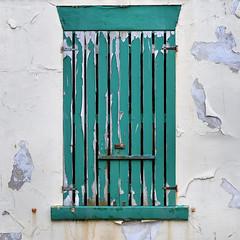 Windold (Breeze of the Dene) Tags: window shutter green white nikon df 50mm f18 g decay urban wabi sabi wabisabi old paint wood wall plaster