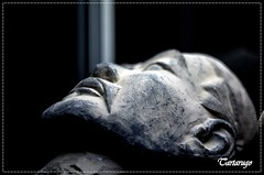 Cabeza (Tartarugo) Tags: pentax tartarugo k5 iis salidas 2017 exposicion guerreros xian vigo galicia españa spain tinglado del puerto miercoles tuesday invierno winter febero february china terracotta warrior