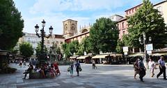 Plaza de Bibrambla (Fernando N.P.) Tags: plaza granada streetshot