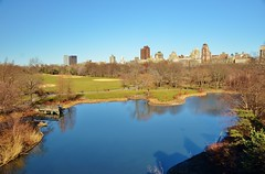 Central Park-Turtle Pond, 03.29.15 (gigi_nyc) Tags: nyc newyorkcity winter centralpark turtlepond
