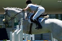Show Jumping CCVM (Myprofe) Tags: madrid horse salto countryclub rider equestrian showjumping hipica saltodeobstculos clubdecampovillademadrid ccvm saltodecaballo campeonatodesalto cdterritorial