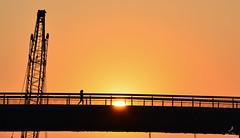 Alpha (liciacroce) Tags: morning bridge summer orange sun hot sunrise italia run abruzzo pescara