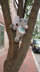 E is for Elephant ... and also Eli <3 (Gamma Man) Tags: baby elephant tree found lookout stuffedanimal babytoy lostelephant