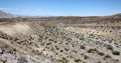 IMG_0007-2.jpg (DrPKHouse) Tags: arizona unitedstates loco goldenvalley bullhead