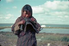 Inuit girl chewing sealskin to soften it, Arviat, Nunavut / Une fille inuite mâche une peau de phoque pour l'assouplir, à Arviat, au Nunavut (BiblioArchives / LibraryArchives) Tags: lac bac libraryandarchivescanada bibliothèqueetarchivescanada canada inuit woman femme women femmes seal phoque identity identité girl fille skin peau dbmarsh eskimopoint arviat northwestterritories nunavut territoiresdunordouest