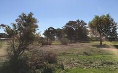 Lot 19 Hambeldon, Schofields NSW