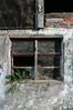 Rusewase (michaelpieper1) Tags: alteshaus baufällig bauernhof scheune abriss verfallen leerstand fassade altbau ziegel fenster fachwerk backsteine unbewohnt löwenzahn zerbrochen pionierpflanze rusewase rügen marode grün pusteblume steine ziegelsteine