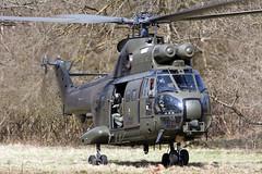 ZJ954_PumaHC1_RoyalAirForce_SPTA_Img02 (Tony Osborne - Rotorfocus) Tags: salisbury plain training area 2010 confined aerospatiale airbus helicopters westland puma hc1 royal air force united kingdom intrepid owl
