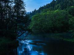 Blue Creek (trumanders) Tags: blue water bluewater creek river forest wood woods night nightshot fishing flyfishing calm säveån sweden swedish long exposure longexposure
