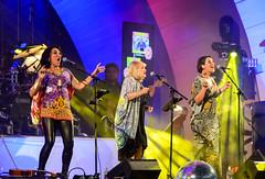 Killing it, Ladies (ajecaldwell11) Tags: ladykillers newyearseve hawkesbay newzealand napier show concert tinacross jackieclarke music suzilynch light