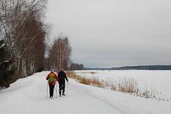 16-00, а позади жалкие 10 км лесных снегов. Но какие это были снега. Они оставили нас без сил!