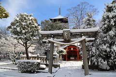 Snow in Kyoto (Teruhide Tomori) Tags: 教王護国寺 東寺 京都 世界遺産 日本 五重塔 鳥居 神社 shrine torii sky snow winter 雪 冬 pagoda temple kyoto japan japon landscape worldheritage tojitemple architecture woodenbuilding construction