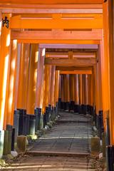 DSC_6042 (okm789911111) Tags: 伏見稻荷神社 千本鳥居 nikon1685