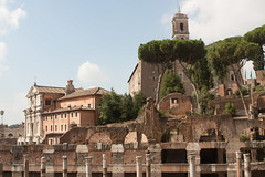 The Roman Forum, Rome, Italy. (hippoking) Tags: europe ancient forum history italy roman rome ruin travel