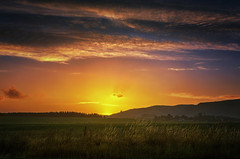 Toward the City of Gold (Kevin_Jeffries) Tags: sunset wow golden kevinjeffries field hill sky cloud nikon nikkor d7100 glow light enchanting colorful nature new