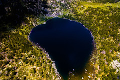 "Malniu. (¡arturii!) Tags: wow amazing awesome superb interesting stunning impressive nice beauty great arturii arturdebattk ""canonoes6d"" gettyimages travel trip tour route viatge holidays vacations nature drone flying flight up view lake llac malniu puigcerda cerdanya catalonia catalunya europe spain drones aerial dji phantom3 cool visual pyrenees pirineus summer spring vegetation colors wild natura paradise mountains landscape outdoors"