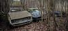 garage poussette (Les Vestiges de la Fin du Monde) Tags: garage voiture abandonné decay lp lost cars urbex visite exploration