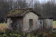 Foto_8678 (lumun2012) Tags: lucio mundula canon eos 7d tamron rovine rurale campagna lazio inverno antiquity architettura