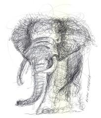 elefante a lapicero (ivanutrera) Tags: draw dibujo drawing dibujoalapicero boligrafo animal sketch sketching wild wildlife lapicero pen elefante elephant dibujoaboligrafo