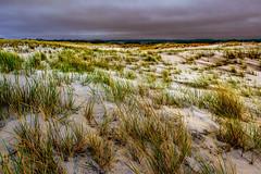 Wind Swept (Tim Pohlhaus) Tags: assateague island national seashore ocean city beach maryland atlantic seascape clouds water sand