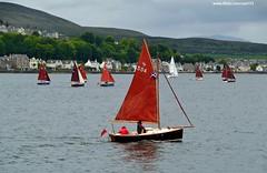(Zak355) Tags: race boats scotland riverclyde sailing yachts rothesay isleofbute cornishshrimper rothesaybay